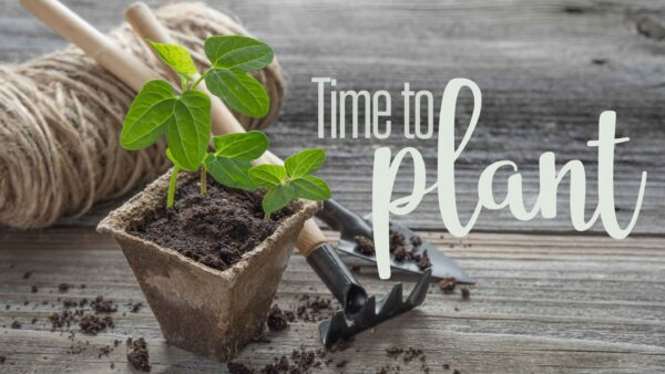 Time To Plant (Week 2 Sermon) Image